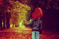 Boy with guitar walking on the autumn road. Back view. Toned ima Royalty Free Stock Photo
