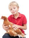 Boy and a hen young holding pet ex battery Royalty Free Stock Images