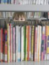 Boy Hiding Behind The Books Royalty Free Stock Photography