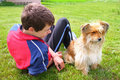 Boy with his dog on the grass smiling teenage lying cute Royalty Free Stock Image