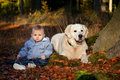 Boy and his dog one year old with fall portrait Stock Photo