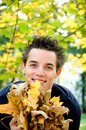 Boy holding autumn leaves Stock Images