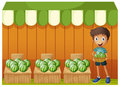 A boy holding a basket of watermelons illustration on white background Royalty Free Stock Photo