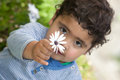 Boy holding a flower cute little Royalty Free Stock Images