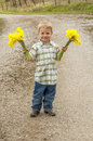 Boy holding flowers young blonde haired two bouquets of daffodils Stock Photography