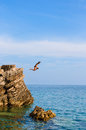Boy Jumping Off Cliff Into Blue Water Royalty Free Stock Photography