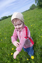 Boy and  ladybird Stock Photography