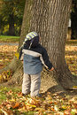 Boy looking at tree Royalty Free Stock Photos