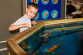 Boy near the aquarium Royalty Free Stock Photo