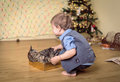 Boy petting a cat while she is looking at him in front of christmas tree Royalty Free Stock Photography