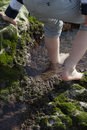 Boy Playing and Exploring in Tidal Pools Near the Ocean Royalty Free Stock Photo