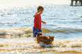 Boy playing with his dog. Royalty Free Stock Photo