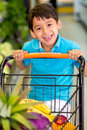 Boy playing with a shopping cart Stock Photography