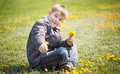 Boy plays with dandelion cute flowers Stock Image