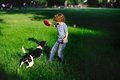 The boy plays on a lawn with dog green field in summer park blonde holding red flying disc dexterous jumps up Royalty Free Stock Photos