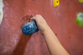 Boy practicing rock climbing in fitness studio Royalty Free Stock Photo