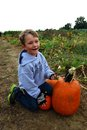 Boy in pumpkin field young caucasian the country Stock Photography