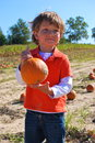 Boy in pumpkin field young caucasian the country Stock Photos