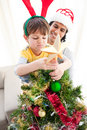 The boy put a star on the top of a Christmas tree Stock Image