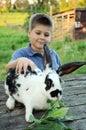 A Boy With A Rabbit In The Gar...