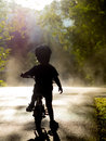 Boy riding bike in mist and trees Royalty Free Stock Image