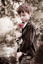 Boy with rose in his hand Stock Images
