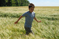 Boy running on the wheat field a preteen runs in green and yellow spikelets strongly swung with wind Royalty Free Stock Images