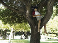 Boy sitting in tree in park listening to mp player smiling Royalty Free Stock Photos