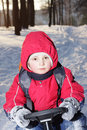 Boy on sledge in forest Royalty Free Stock Image