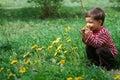 Boy smelling dandelion flower Stock Photos