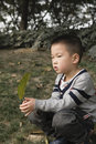 Boy squat on lawn chinese with one leaf in hand Stock Image