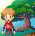 A boy standing in front of the apple tree illustration Royalty Free Stock Photography