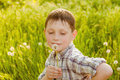 Boy On Summer Nature With Dand...