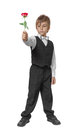 Boy in a tuxedo with a rose in hand isolate on white background Stock Images