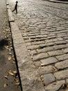 Boy walking cobblestones Royalty Free Stock Image