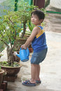 Boy watering plant Royalty Free Stock Images