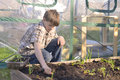 Boy working in a garden outdoor gardening Stock Photos