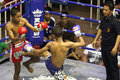 Boys fighting muay-thai Royalty Free Stock Photo