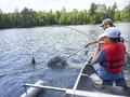 Boys fishing in a canoe catch a walleye Royalty Free Stock Photo