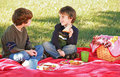 Boys Having a Picnic Stock Photography