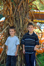 Boys in Pumpkin Patch Stock Photography
