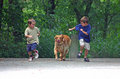 Photo : Boys Racing Dog  background