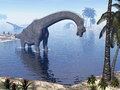 Brachiosaurus dinosaur in water d render walking landscape by morning light Royalty Free Stock Image