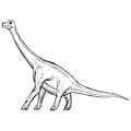 Brachiosaurus hand drawn sketch illustration of Royalty Free Stock Photos