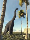 Brachiosaurus in the jungle looking at a palm tree. Royalty Free Stock Photo