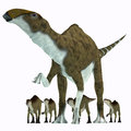 Brachylophosaurus herbivore dinosaur was a herbivorous hadrosaur that lived during the cretaceous period of alberta canada and Royalty Free Stock Image