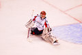 Braden Holtby Washington Capitals Stock Photography