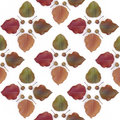 Bradford Pear Tile Royalty Free Stock Image