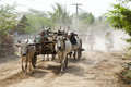Brahma cows walk old carts down a dusty road in the village of hanlin myanmar Royalty Free Stock Image