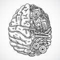 Brain as processing machine